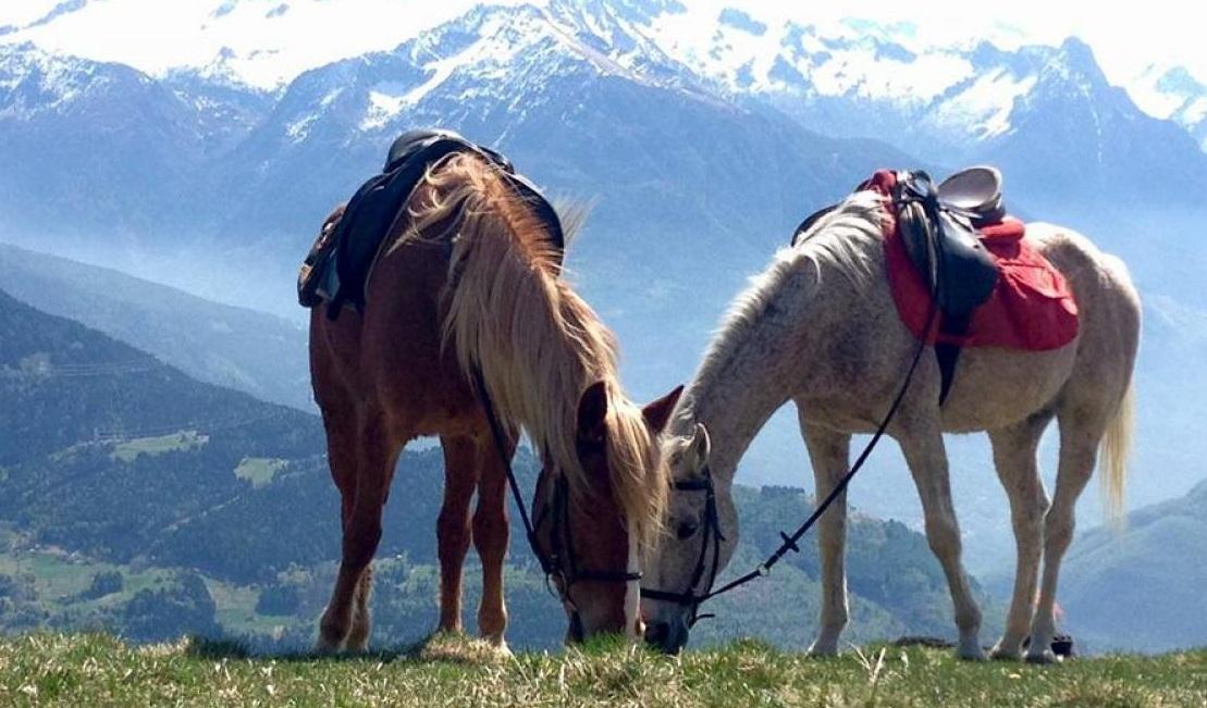 passeggiate a cavallo a BOARIO TERME